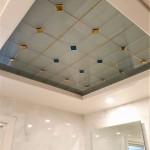 شیشه سقف سرویس بهداشتی شماره 1 نمای 2