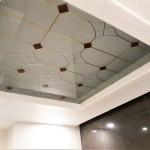 شیشه سقف سرویس بهداشتی شماره 4 نمای 7